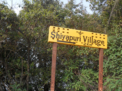 Shivapuri National Park-Day Tour