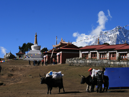 Everest Sherpa Cultural Trek